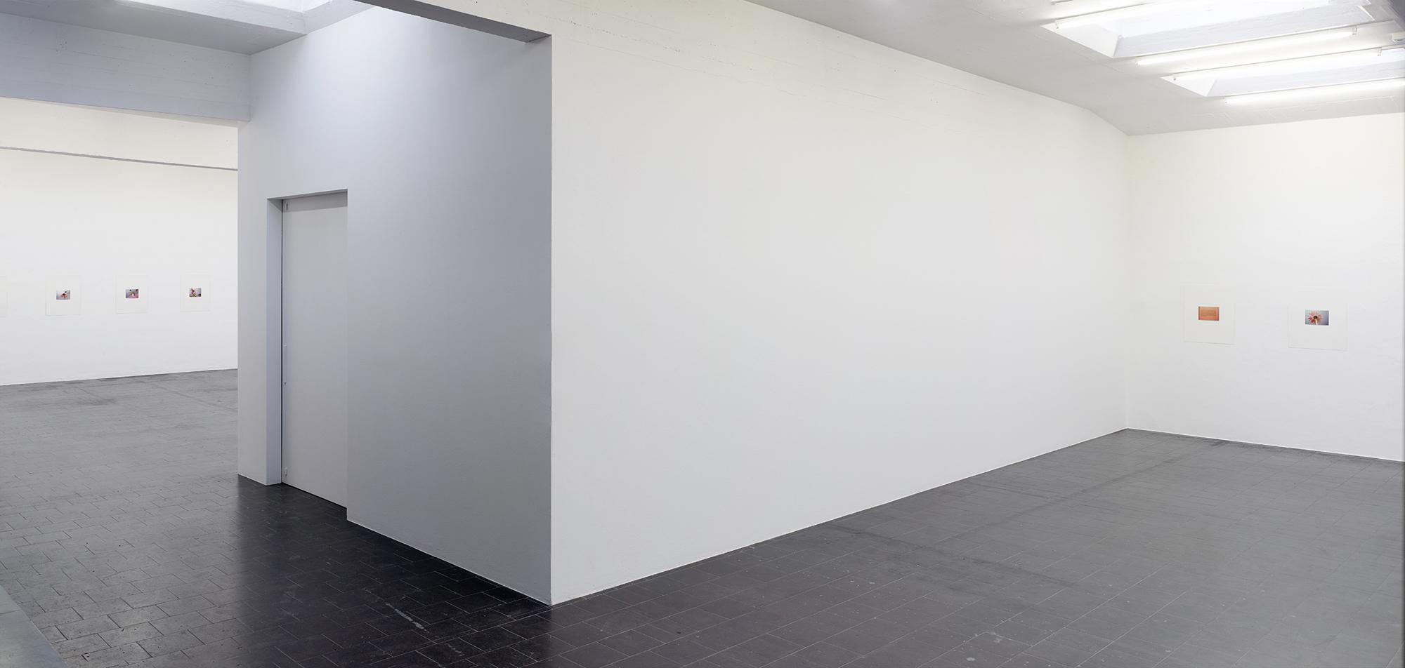 Temporary Gallery Köln ArtJunk
