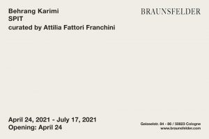 Braunsfelder Family Collection Behrang Karimi ArtJunk